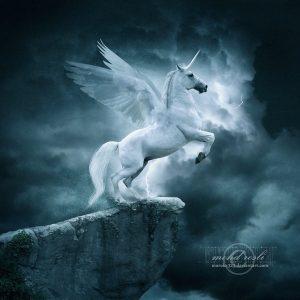 AstridNielsch_unicorn_07