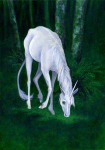 AstridNielsch_unicorn_08
