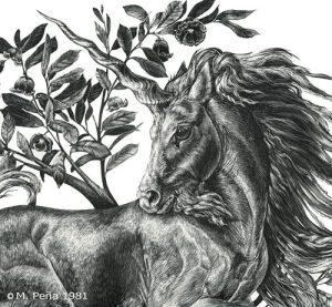 AstridNielsch_unicorn_17