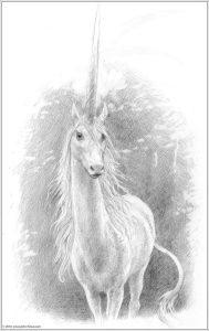 AstridNielsch_unicorn_29