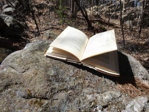 Cedar Sanderson's book