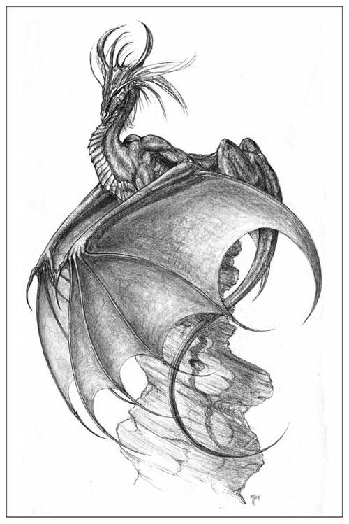 stridnielsch_dragon10