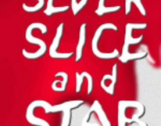 Book Review: Sever, Slice, and Stab by Ty Johnston