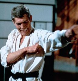 Flint knows martial arts!