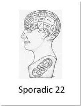 Sporadic-22 (1)