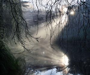 fog-crespuscular rays