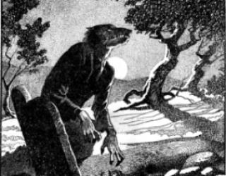 Una mujer-lobo embarazada: ejercicio de verosimilitud
