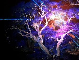Liquid Imagination cover