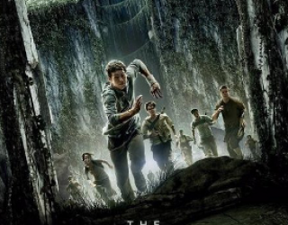 Film Review: The Maze Runner
