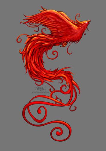 asni_phoenix_08