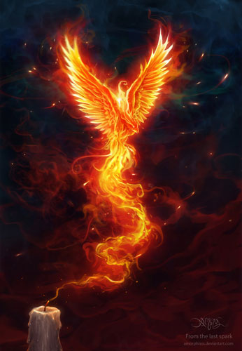 asni_phoenix_12