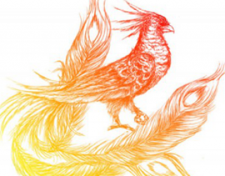 Asni's Art Blog: Phoenix