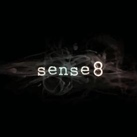 Figure 1 - Sense8 Logo
