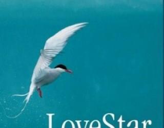 Scide Splitters: LoveStar by Andri Snaer Magnason
