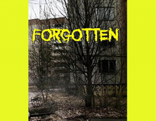 Review: Forgotten by Samie Sands