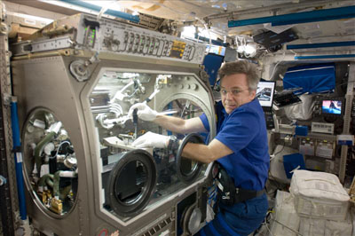 ISS Canadian Astronaut Bob Thirsk using microgravity science glovebox