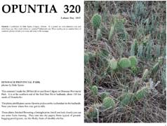 Opuntia-320