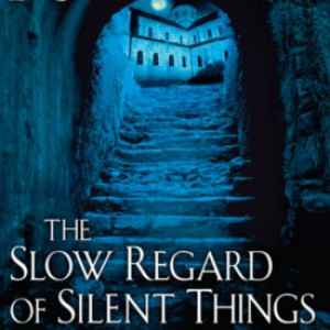 Review: The Slow Regard of Silent Things