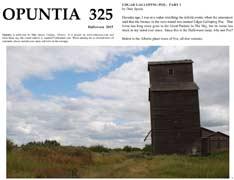 Opuntia-325