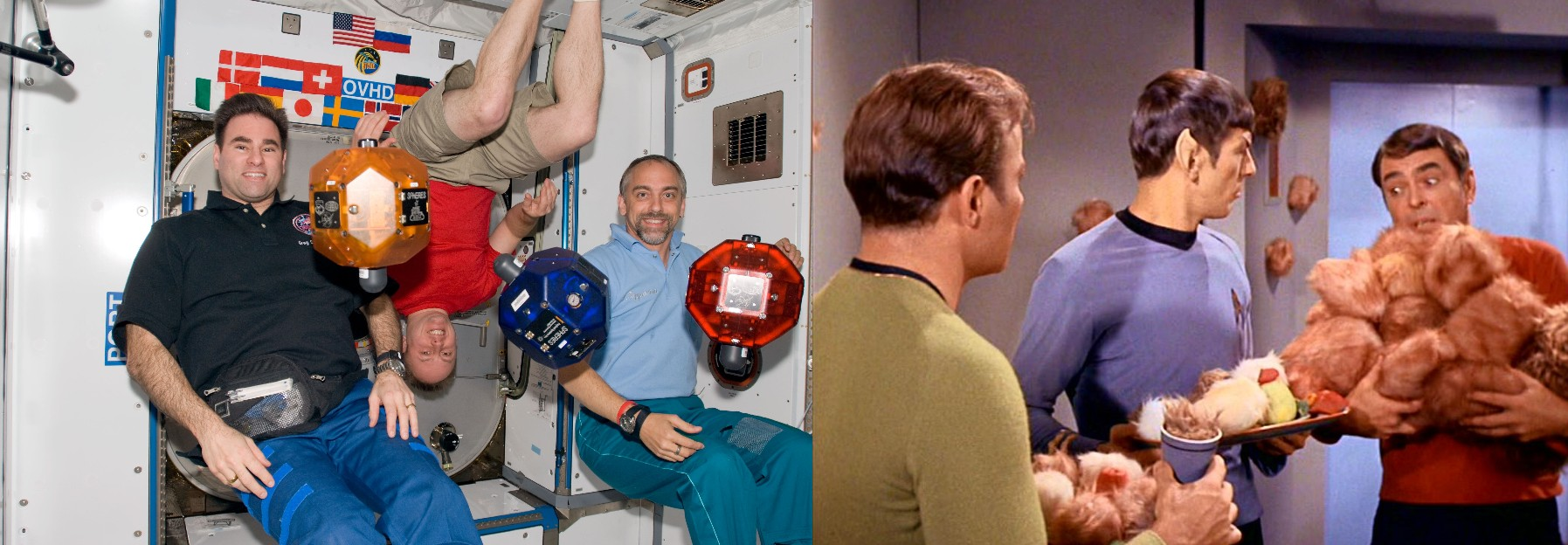 Tribbles vs ISS Spheres 2