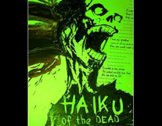 2015 Poetry Recap plus Review – Haiku of the Dead