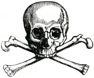 Early-Skull-Image-GraphicsFairy