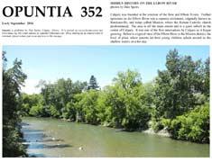 opuntia-352