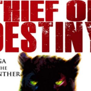 Review: Thief of Destiny by Jay Requard