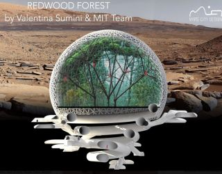 Redwood Forest – a Radical New Design for a Martian City