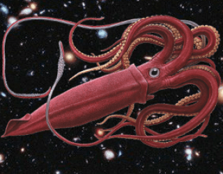 Squids From Space…Talking