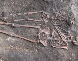 Ancient DNA reveals the secrets of a devastating European disease